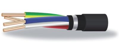 Кабель ВБШв нг(А) на 0,66 кВ по ГОСТ Р 53769-2010 / ТУ 3500-021-41602515-2014  Силовые кабели с медными жилами, с ПВХ изоляцией с защитным покровом типа БбШв пониженной горючести